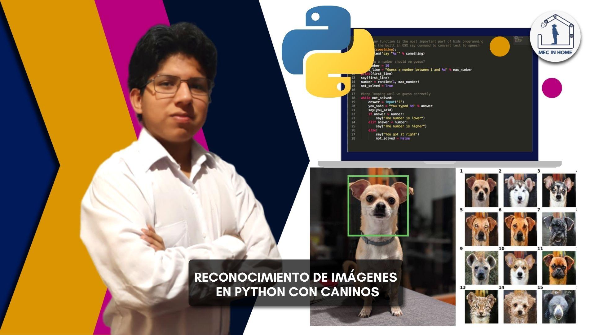 Clasificación de imágenes en Python